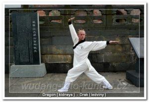 Wu Xing Qigong - qigong pěti zvířat - Wudang-Brno.cz