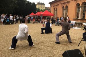 Vystoupení a akce Wudang-Brno.cz - Taichi, Čchi kung a Kungfu